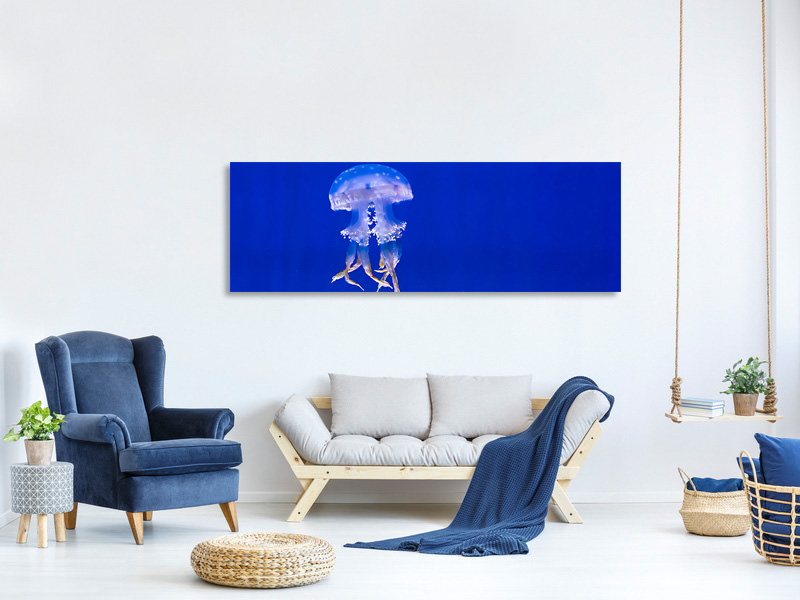 Panoramic Canvas Print Glowing jellyfish