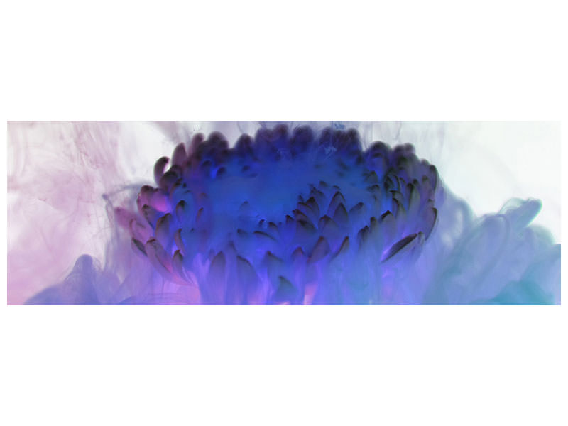 Panoramic Canvas Print Floating Art 2