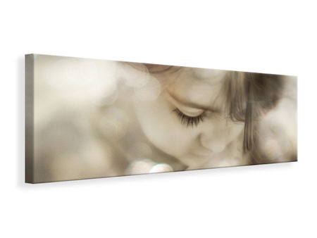 Panoramic Canvas Print Hi Lite