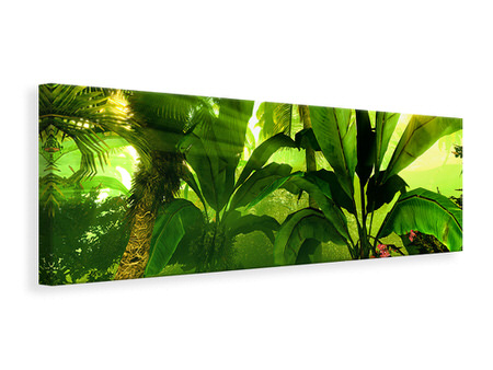 Panoramic Canvas Print Sunrise In The Rainforest