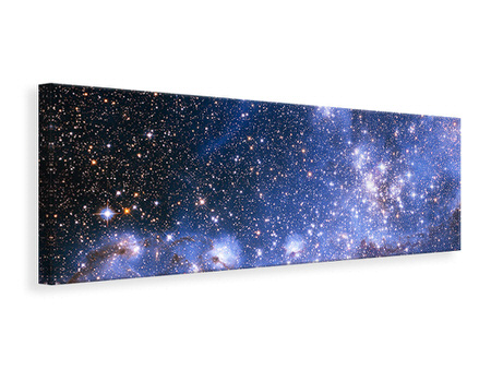 Panoramic Canvas Print Starry Sky