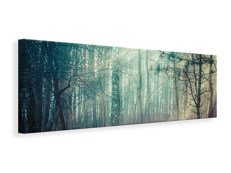 Panoramic Canvas Print Pinewood
