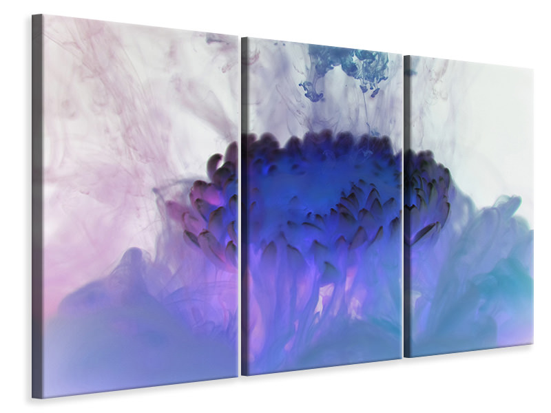 3 Piece Canvas Print Floating Art 2