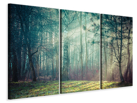 3 Piece Canvas Print Pinewood