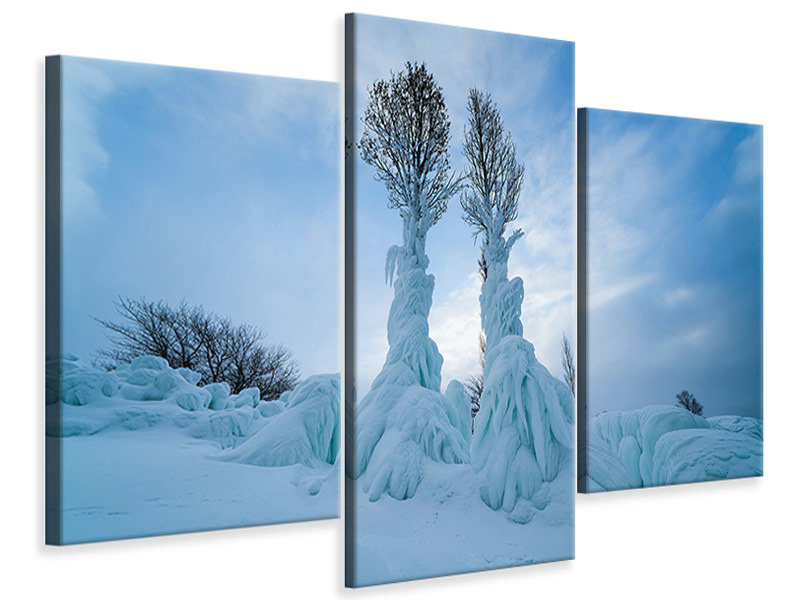 Modern 3 Piece Canvas Print Warmth In The Cold