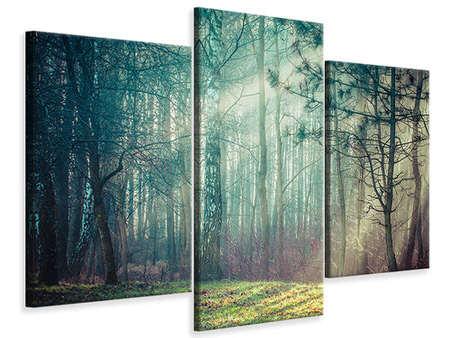 Modern 3 Piece Canvas Print Pinewood