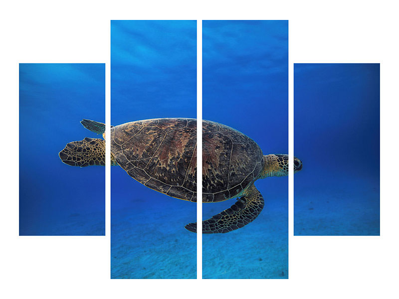 4 Piece Canvas Print Green Turtle In The Blue