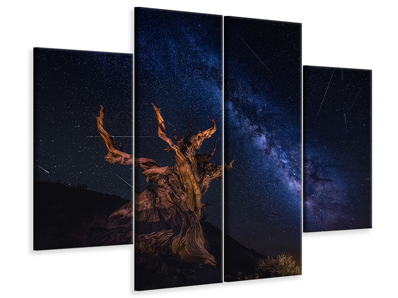 4 Piece Canvas Print Shooting Stars Night