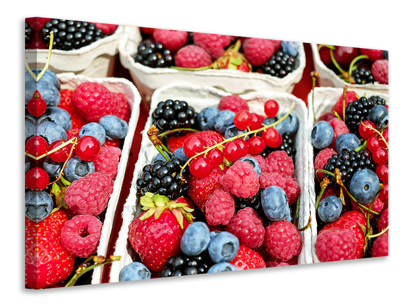 Canvastaulu Bowls with berries