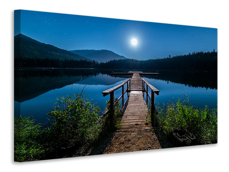 Canvas print One night at full moon