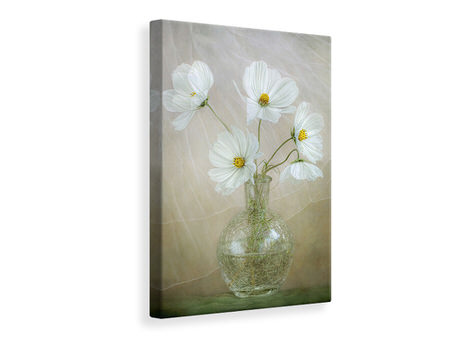 Canvas print Cosmos Breeze