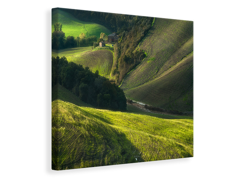 Canvas print Crete Senses/Tuscany