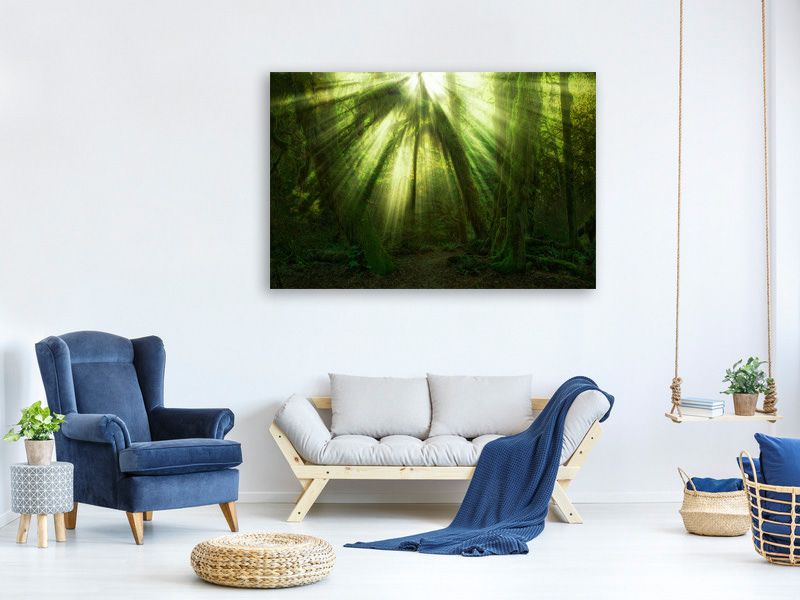 Canvas print The Miracle