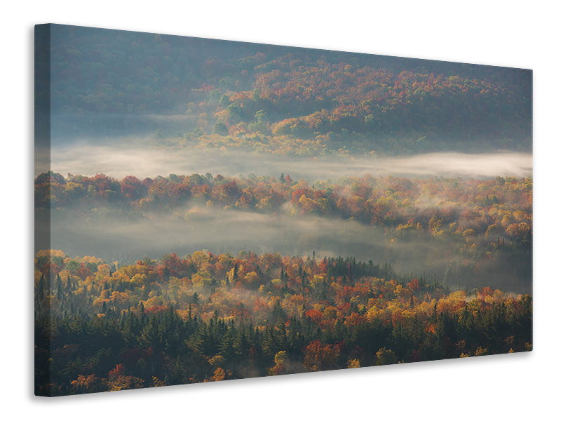 Canvas print Misty Morning II A