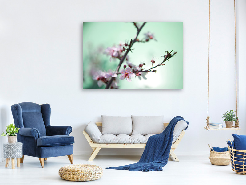 Canvas print Beautiful Japanese Cherry Blossom