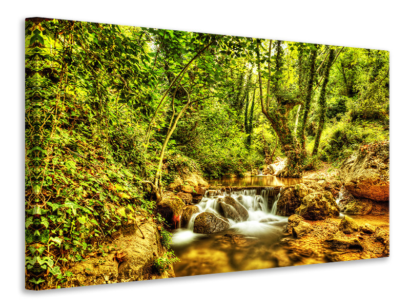 Canvas print Waterfall In The Forest