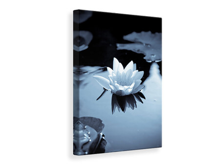 Canvastaulu Black And White Photograph Waterlily