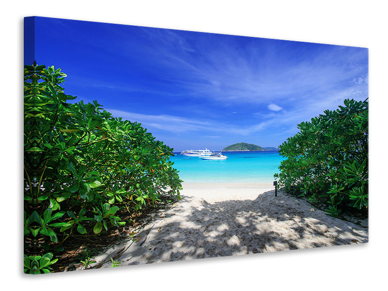 Canvas print Similan Islands