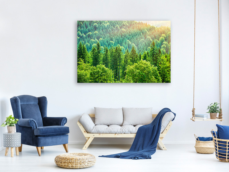 Canvas print The Forest Hill