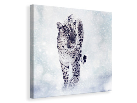Canvas print Photo Wallaper The Leopard